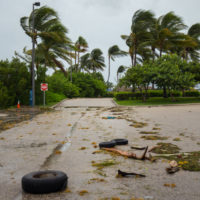 Bankruptcy-after-hurricane-irma